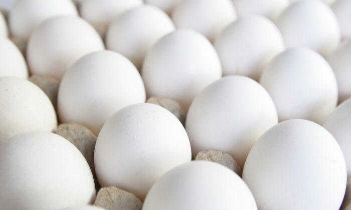 सन्डे हो या मंडे क्यों खाए  रोज अंडे जाने ( egg benefits )