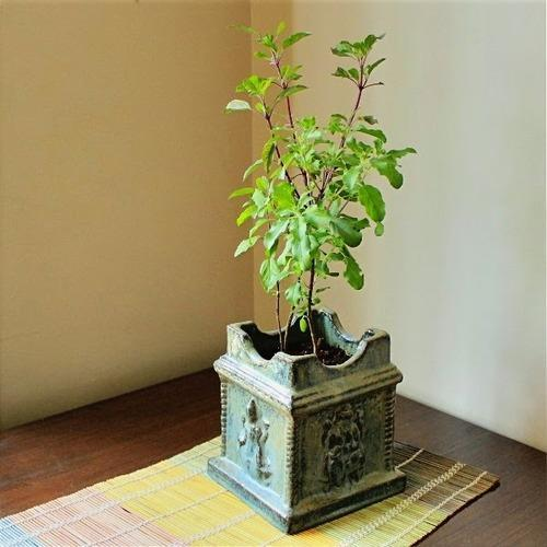 cement-tulsi-stand-500x500