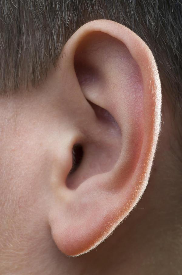 लम्बे कान