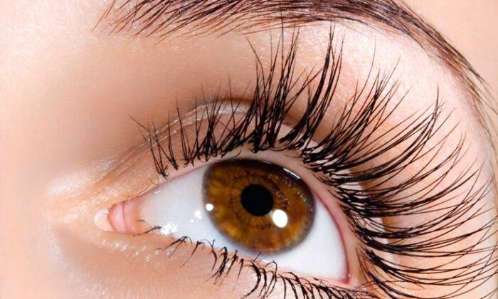 आँखों की सुरक्षा पर दे ध्यान ( eye sefty )