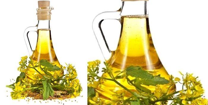 प्रकृति का अनमोल उपहार है सरसों का तेल ( amazing benefits of musturd oil )