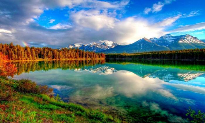 न्यू इयर को बनाए यादगार,अनूठा द्रश्य देखने को  मिलता है प्रकृति का इन स्थानों पर ( make your new years memorable )