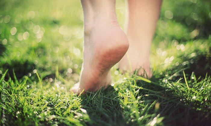 चश्मे को करना है हमेशा के लिए दूर तो हरी घास पर नंगे पांव टहलिए जरुर ( bare feet walking through field )