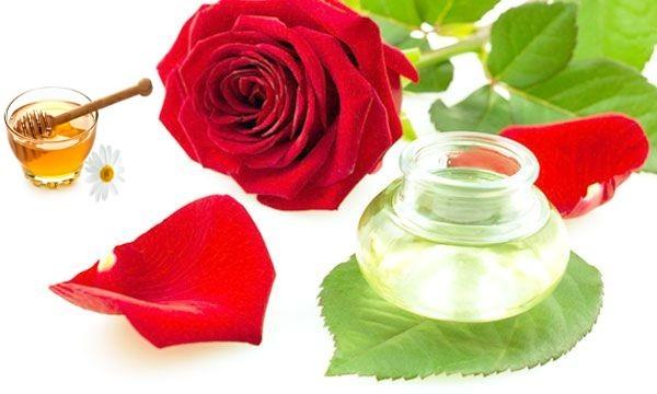 गुलाब औषधिय गुणों से भरपूर है जानिए कैसे ( amazing benefits of roses )