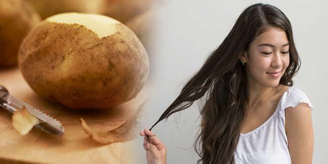 अब आलू से चमकाए अपने बाल और बालो की उम्र भी बढाए ऐसे ( amazing potato benefits for hair )
