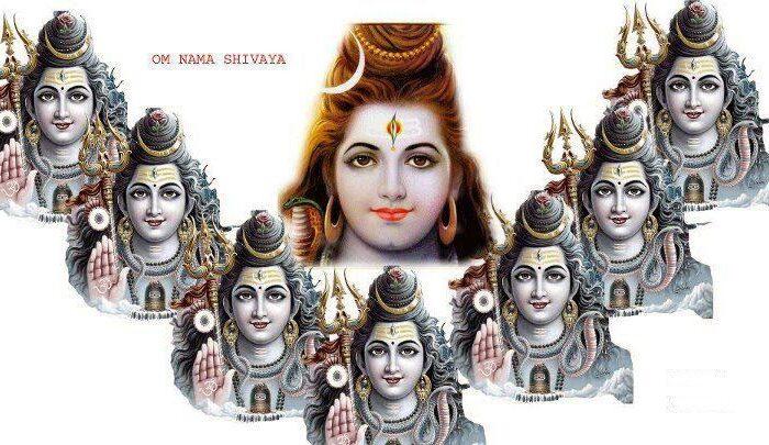 शिवरात्रि का व्रत शिव की कृपा प्राप्त करने का सबसे सुगम साधन है! ( shiv vrat katha and importance of mahashivratri )