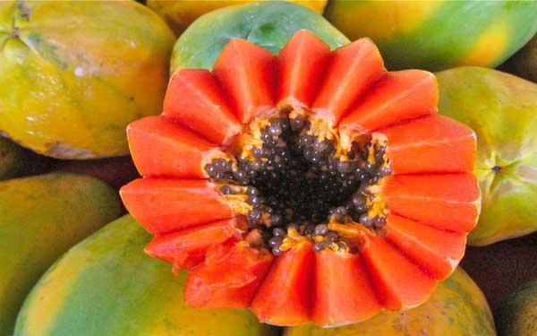 पपीते में है पोषक तत्व जो दे बेहतर स्वास्थ ( papaya benefits of health )