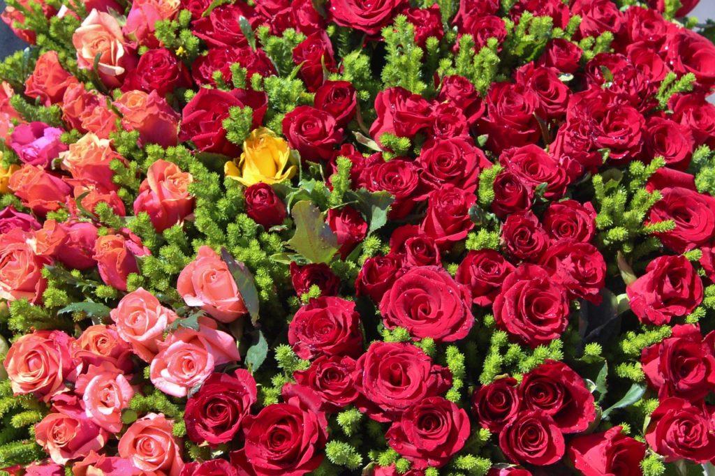 flowers-660600_1280