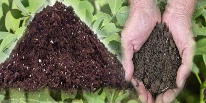 जैविक खाद का खेतो में महत्व जाने ( benefits of organic farmeing )