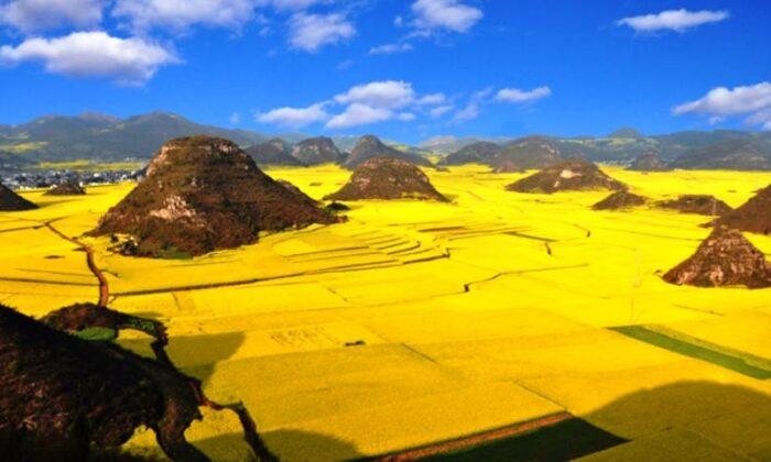 इसी दुनियाँ की है ये 11 तस्वीरे,जो आपको जन्नत की याद दिला देंगी ( amazing 11 pictures of nature )