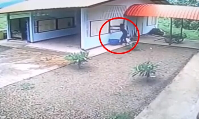 एक चोर की नादानी देख आप भी हंस पड़ोगे, वीडियो लाखोँ बार देखा गया ( funny cctv footage stupid burglar break the garage window )
