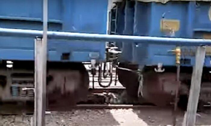 """पटरियों के बीच फंसा """"बुजुर्ग"""" 3 मिनट तक गुजरती रही मालगाड़ी, फिर भी जिंदा बच निकला ( goods train runs over old man on satna railway station madhya pradesh )"""