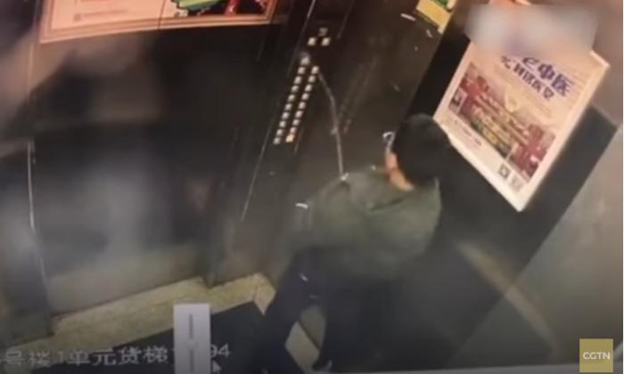 वीडियो : बच्चे ने लिफ्ट में कर दिया ऐसा कांड, जिससे लिफ्ट मशीन हुई खराब ( viral video boy gets trapped in elevator after peeing inside )