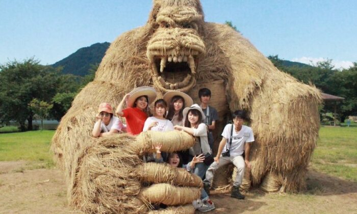 तस्वीरें : धान की कटाई के बाद बचे पुआल से किया जापानी छात्रो ने कमाल ( wara art festival in japan viral picture )