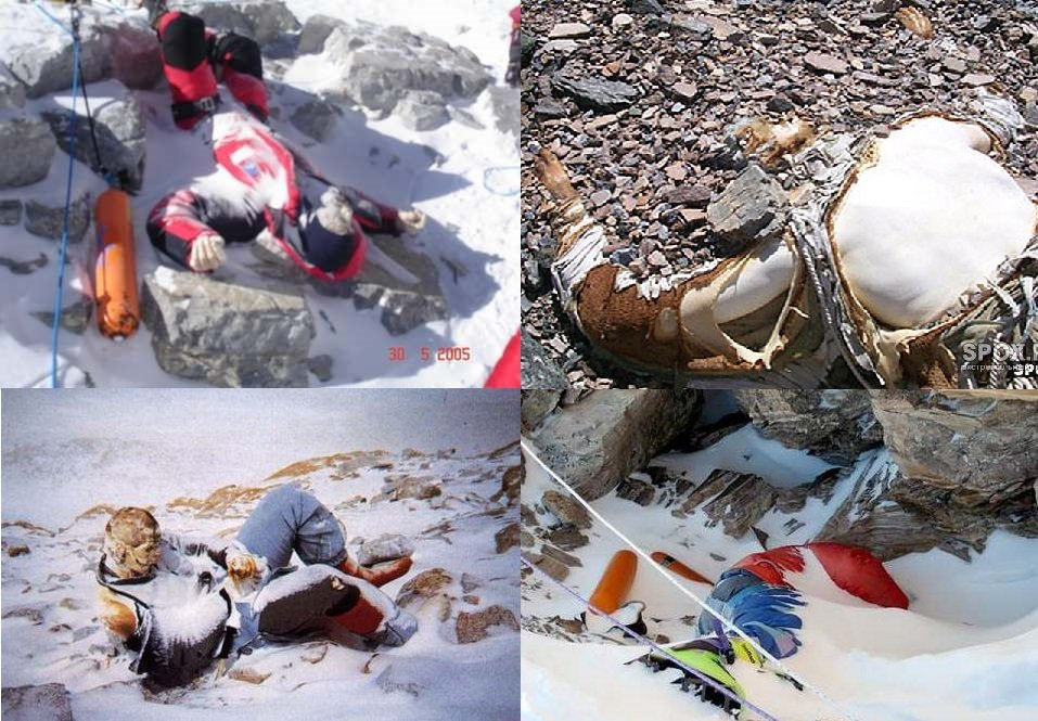 More than 200 dead bodies