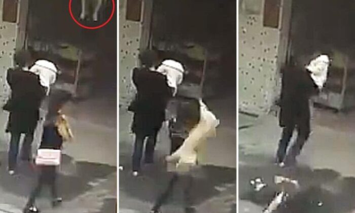 Woman knocked unconscious after dog falls from the sky onto her head