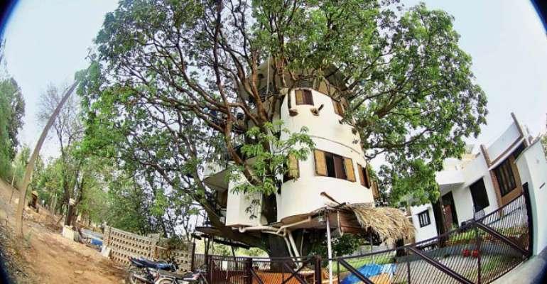 87 साल पुराने आम के पेड़ पर चार मंजिला घर