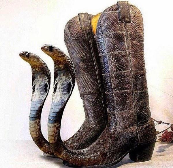 cobra-head-cowboy-boots