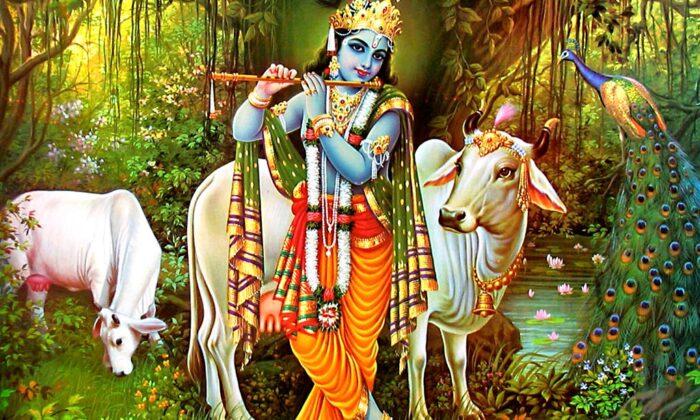 श्री कृष्ण चालीसा ( shree krishn chalisa )