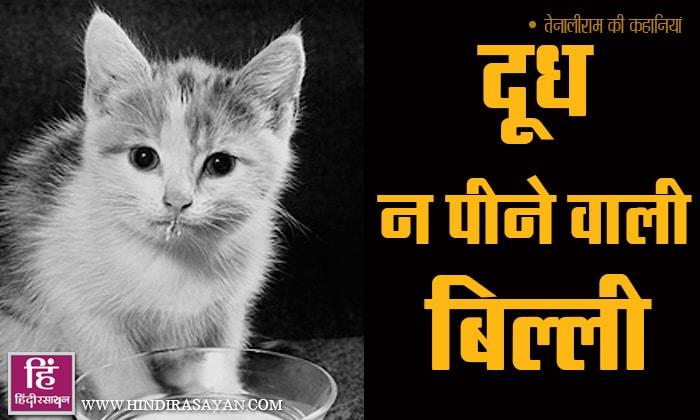 Cat Fears Milk Doodh Na Peene Wali Billi Tenali Raman Short Stories In Hindi